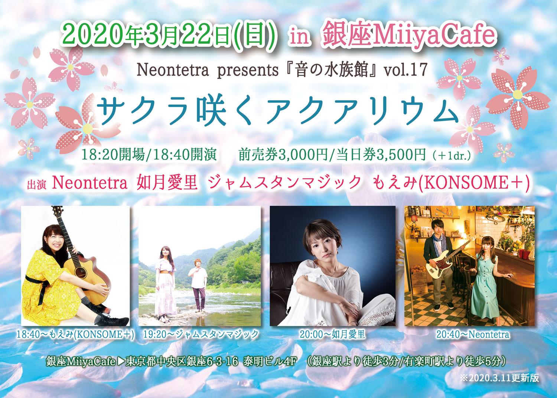Neontetra_spring_LIVE